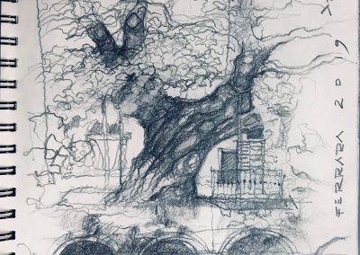 disegno_11